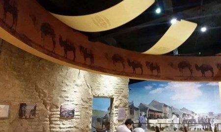 Эрээнд ийм сайхан динозаврын музей байдгийг хүмүүс тэр бүрий мэддэггүй юм билээ